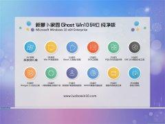 新萝卜家园Win10 2021.04 64位 特别纯净版