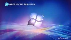 电脑公司v2021.10最新win7 64位新机特快版